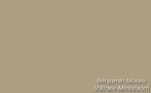 Benjamin-Moore-Shiitake-Mus