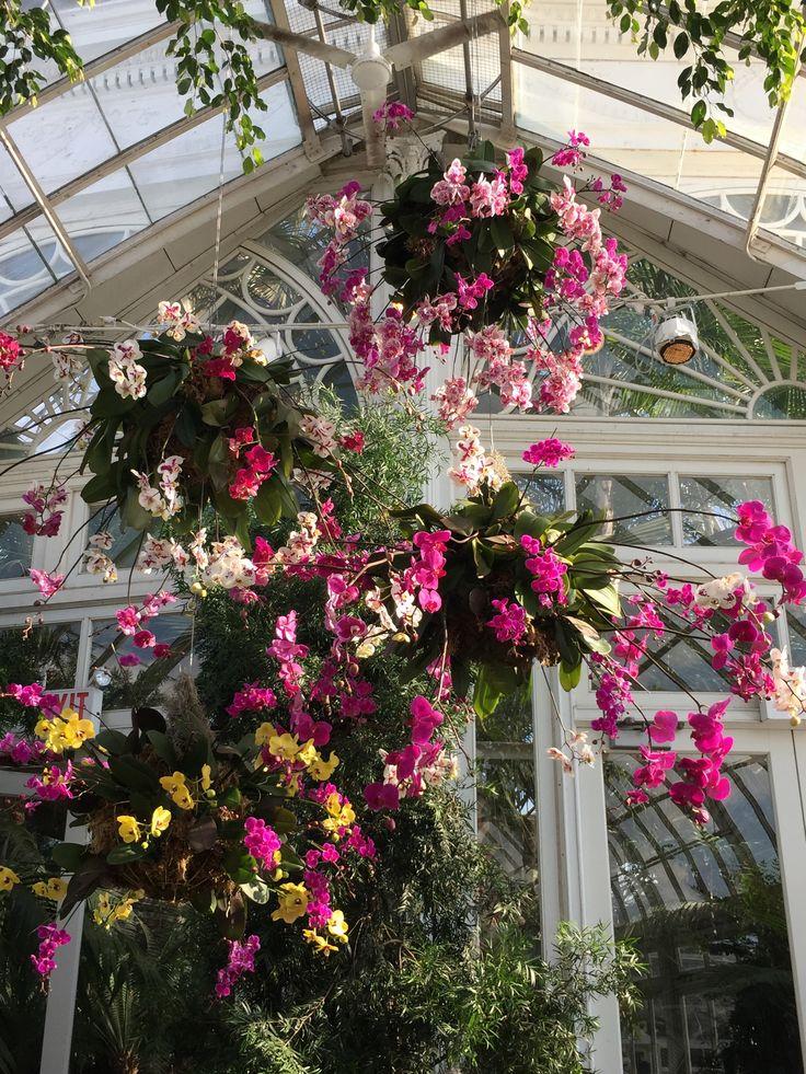 New York Botaincal Gardens