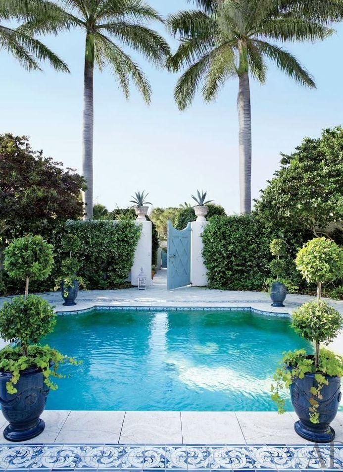 Palm Beach Pool Cami Weinstein