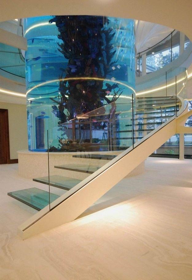 Glass Aquarium Staircase Cami Weinstien