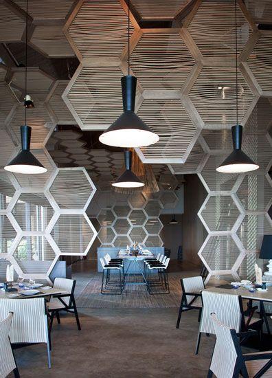 Ceiling Hexagons Cami Weinstein
