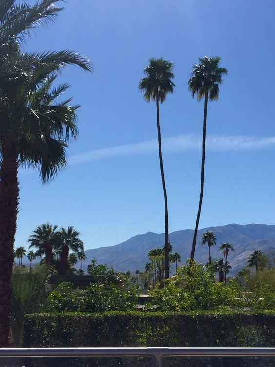 Modernism Week Palm Springs 2016 Cami Weinstein
