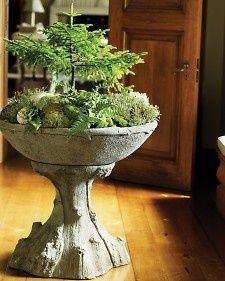 garden-topiary-cami-weinstein